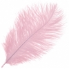 "Ostrich Drab Feathers 9-10"" Premium Quality Baby Pink"